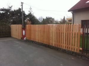 Modřínový plot (2)